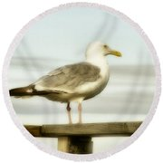 Perch By The Water Round Beach Towel
