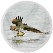 Perch On The Run 2 Round Beach Towel