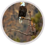 Perched At Smith Rock Round Beach Towel