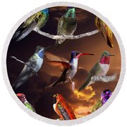 Perched Hummingbird Collage Round Beach Towel