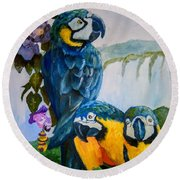 Perched In Paradise Round Beach Towel