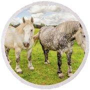 Percherons Horses Round Beach Towel