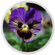 Perfect Pansy  Round Beach Towel