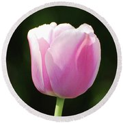 Perfect Pastel Pink Flowering Tulip Blossom In Spring Round Beach Towel