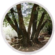 Perfect Picnic Tree Round Beach Towel