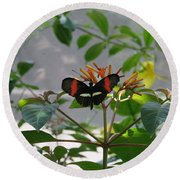 Perfect Set - Butterfly Round Beach Towel