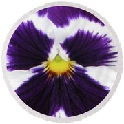 Perfectly Pansy 01 Round Beach Towel