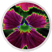 Perfectly Pansy 01 - Photopower Round Beach Towel