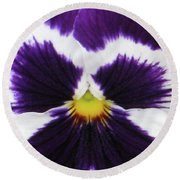 Perfectly Pansy 02 Round Beach Towel