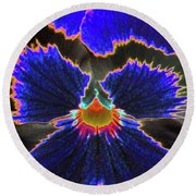 Perfectly Pansy 02 - Photopower Round Beach Towel