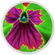 Perfectly Pansy 04 - Photopower Round Beach Towel