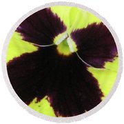 Perfectly Pansy 05 Round Beach Towel