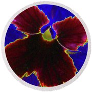 Perfectly Pansy 05 - Photopower Round Beach Towel