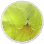 Perfectly Pansy 07 Round Beach Towel
