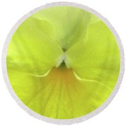 Perfectly Pansy 08 Round Beach Towel