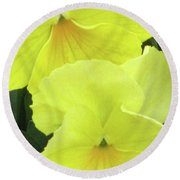 Perfectly Pansy 09 Round Beach Towel
