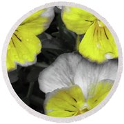 Perfectly Pansy 13 - Bw - Yellow Round Beach Towel