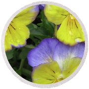 Perfectly Pansy 13 Round Beach Towel