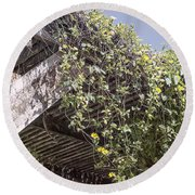 Pergola And Vines Round Beach Towel
