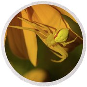 Peril Among The Petals Round Beach Towel