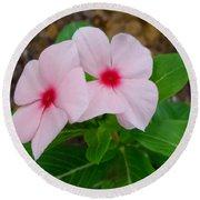 Periwinkle Flower 2 Round Beach Towel