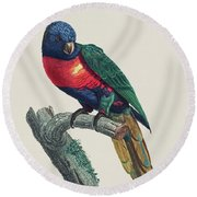 Perruche A Tete Bleue, Male / Rainbow Lorikeet, Male - Restored 19th Cent. Illustration By Barraband Round Beach Towel