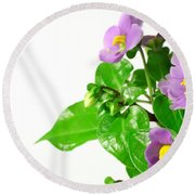 Persian Violets Round Beach Towel