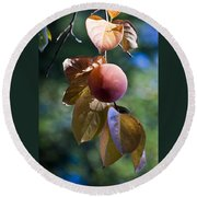 Persimmon Tree Round Beach Towel