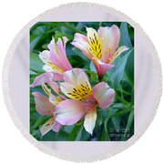 Peruvian Lily Of The Incas Round Beach Towel