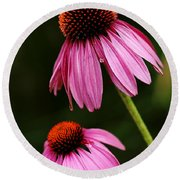 Petals And Quills Round Beach Towel