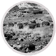 Petrified Forest National Park #2 Round Beach Towel