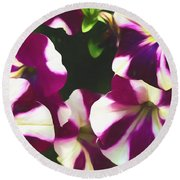 Petunias With A Flare Round Beach Towel