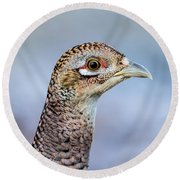 Pheasant Hen Round Beach Towel