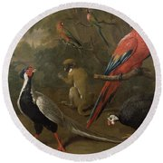 Pheasant Macaw Monkey Parrots And Tortoise  Round Beach Towel