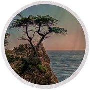 Photogenic Tree Round Beach Towel