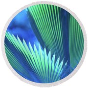 Photograph Of A Royal Palm In Blue Round Beach Towel