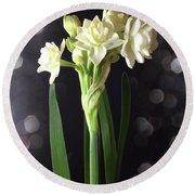 Photograph Of Narcissus Erlicheer A White Flower Round Beach Towel