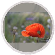 Photography Round Beach Towel