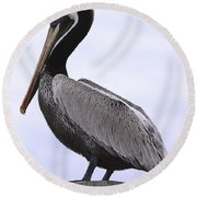 Pier Pelican Ponce Inlet Round Beach Towel