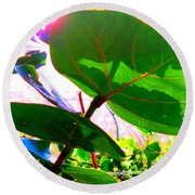Piercing Sea Grapes Round Beach Towel