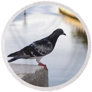 Pigeon By The River Round Beach Towel