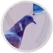 Pigeon  Round Beach Towel