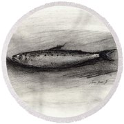 Pilchard Drawing Round Beach Towel