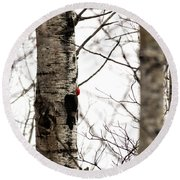 Pileated Round Beach Towel