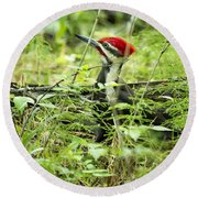 Pileated Woodpecker On The Ground No. 1 Round Beach Towel
