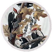 Pileated Woodpeckers Round Beach Towel