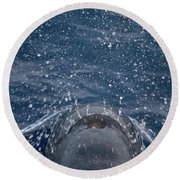 Pilot Whale 7 The Breath Round Beach Towel