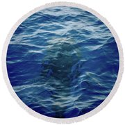 Pilot Whale 9 The Mermaid  Round Beach Towel