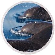 Pilot Whales 1 Round Beach Towel