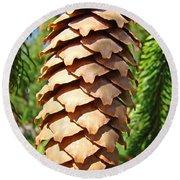 Pine Cone Art Prints Pine Tree Artwork Baslee Troutman Round Beach Towel